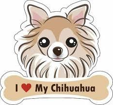 Dog Bone Sticker I Love My Chihuahua Car Sign Puppy Decal Buy 2 Get 3rd Free Usa 1 99 Picclick