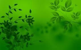 خلفية خضراء خلفيات خضراء اللون روعه احبك موت
