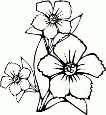 free drawing of flowers free