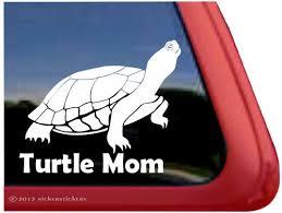 Turtle Decals Stickers A Nickerstickers