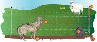 How Electric Fence Netting Works Premier1supplies