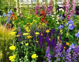 chelsea flower show 2018 garden and