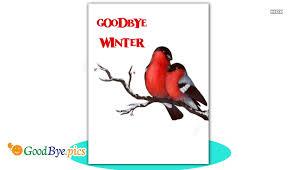 goodbye winter goodbye pics