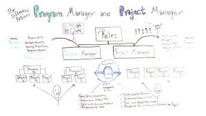 program manager vs project manager