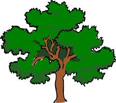 Bildergebnis für Wald clipart