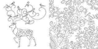 enchanted forest coloring book pdf