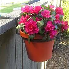 Amazon Com 8 Diameter Flower Pot Holder Fence Bracket Garden Outdoor