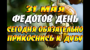 31 мая - народный праздник Федотов день, Семь дев / Сегодня обязательно  прикоснись к дубу! - YouTube