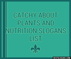 30 catchy about plants and nutrition
