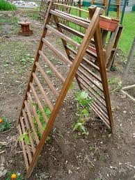 diy garden trellis plans designs and ideas
