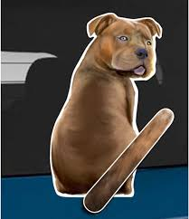 Amazon Com Wagging Wipers Pit Bull Dog Car Rear Wiper Sticker Decal Automotive