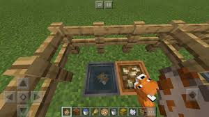 Building A Zoo When A Baby Fox Fell Asleep In The Water Dish Minecraft