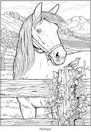 Horsecoloringpages In 2020 Kleurplaten Kleurboek Dieren Tekenen