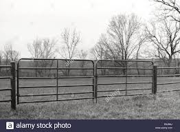 Farm Pasture Metal Fence Gate In Black And White Stock Photo Alamy