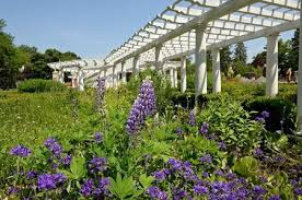 13 upstate new york gardens open to the