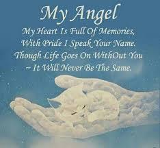 ♡ run sweetie in rainbow bridge ♡ pet grief pet loss