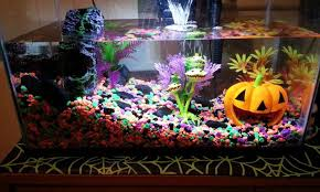 Top Scariest Halloween Themed Aquariums