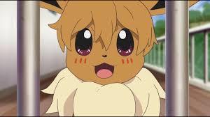 Little Eevee encounters Hungry Houndour – Pokémon The Series: Sun ...