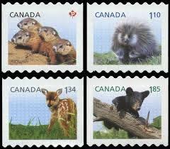 Buy Canada #2604-2607 - Baby Wildlife Definitives (2013) P (63¢) + $1.10 +  $1.34 + $1.85 | Arpin Philately