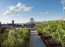 rooftop garden is a miniature high line