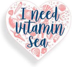 Amazon Com I Need Vitamin Sea Seashell Heart Sticker Car Truck Window Bumper Vinyl Decal Cooler Ocean Beach Graphic Cup Laptop Everything Else