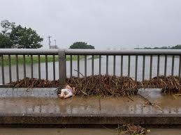 Priscilla Kennedy - Houston Flood Museum