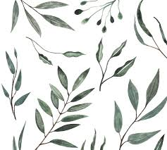 watercolor leaves wall decal pottery barn