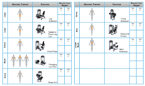 30 minute circuit workout precor