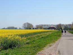 Pronkjewailpad Zuidroute (3) Slochteren-Nieuw Scheemda 18 april 2019.