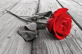 kata kata mutiara bunga layu kata kata mutiara bunga layu