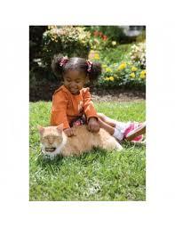 Petsafe Cat Fence Electronic Cat Fence Pcf 1000 20