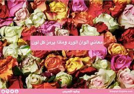 دليلك لأختيار لون الورد حسب المناسبات المختلفة بوكيه اكسبريس