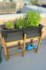 herb garden in a homemade planter box