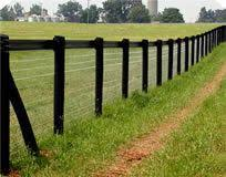 No Climb Horse Wire With Wire Tape Above For Keeping Dogs In And Predators Out Backyard Fences Fence Landscaping Farm Fence