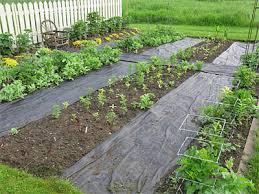 using weed fabric gardener s supply