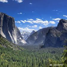 Tunnel View Yosemite National Park Half Dome And El Capitan Wall Mural Pixers We Live To Change