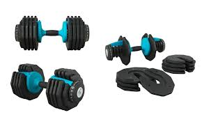 cast iron adjule dumbbell review