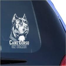 Amazon Com Cane Corso Clear Vinyl Decal Sticker Portrait For Window Corz Molosser Italian Mastiff Dog Sign Art Print Arts Crafts Sewing