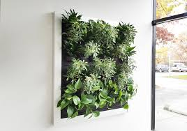 livesystem living walls and frames