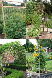 easy diy garden trellis ideas plant