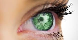 green eyes the most attractive eye color