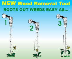get rid weeds weed removal gardening
