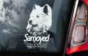 Samoyed Car Sticker Bjelkier Sobaka Laika Dog Window Sign Decal Gift Pet V02 Ebay