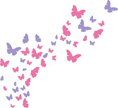 Easma Butterfly Decals Girls Wall Decals Buy Online In Luxembourg At Desertcart