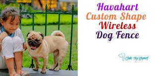 Havahart Custom Shape Wireless Dog Fence Shih Tzu Expert