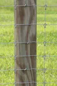 Fixed Knot Woven Wire 17 75 6 12 Ga 330 Roll Fence Fence Design Wire Fence