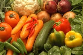 En Camagüey se pone la ciencia al servicio de la producción de alimentos