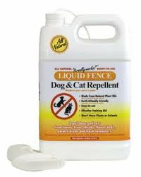 8 Repellent For Garden Ideas Repellent Cat Repellant Garden Pests