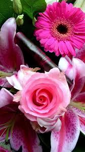 iphone wallpaper hd pink flower 2020