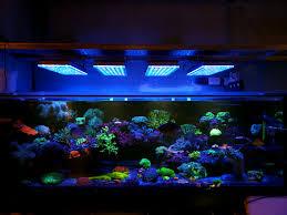 Đèn chiếu sáng bể cá cảnh Atlantik V4 • Đèn LED Orphek